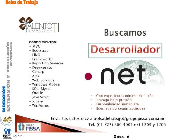 desarrollador net