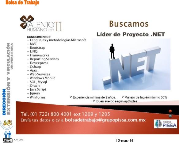 lider de proyecto net
